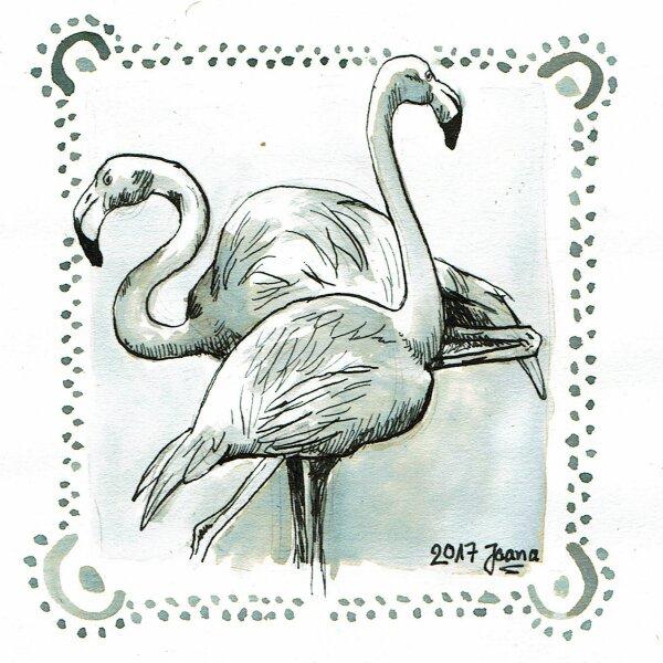 08-crooked- Flamingos