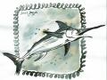 06-sword- Schwertfisch