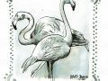 08-crooked- Flamingos