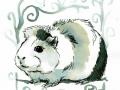 26-squeak- Meerschweinchen