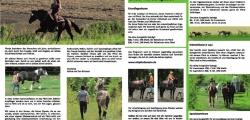 Mit Pferden sein - Kursprogramm 2012 - Seite 1