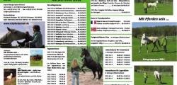 Mit Pferden sein - Kursprogramm 2012 - Seite 2