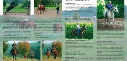 Mit Pferden sein - Kursprogramm 2013 - Seite 1