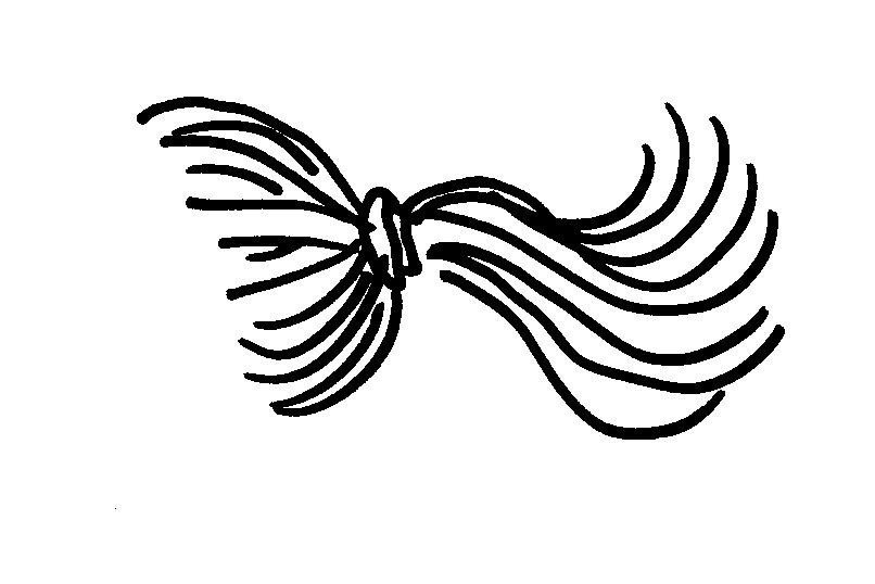 Haare Zeichnen       Bungsbl  Tter Im Pdf Format   Jajofo De