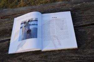 Printdesign: Book Mit Pferden sein ... das Leben ist einmalig by Sabine Birmann