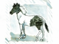 02 divided - Zorse