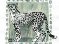 11-run- Gepard