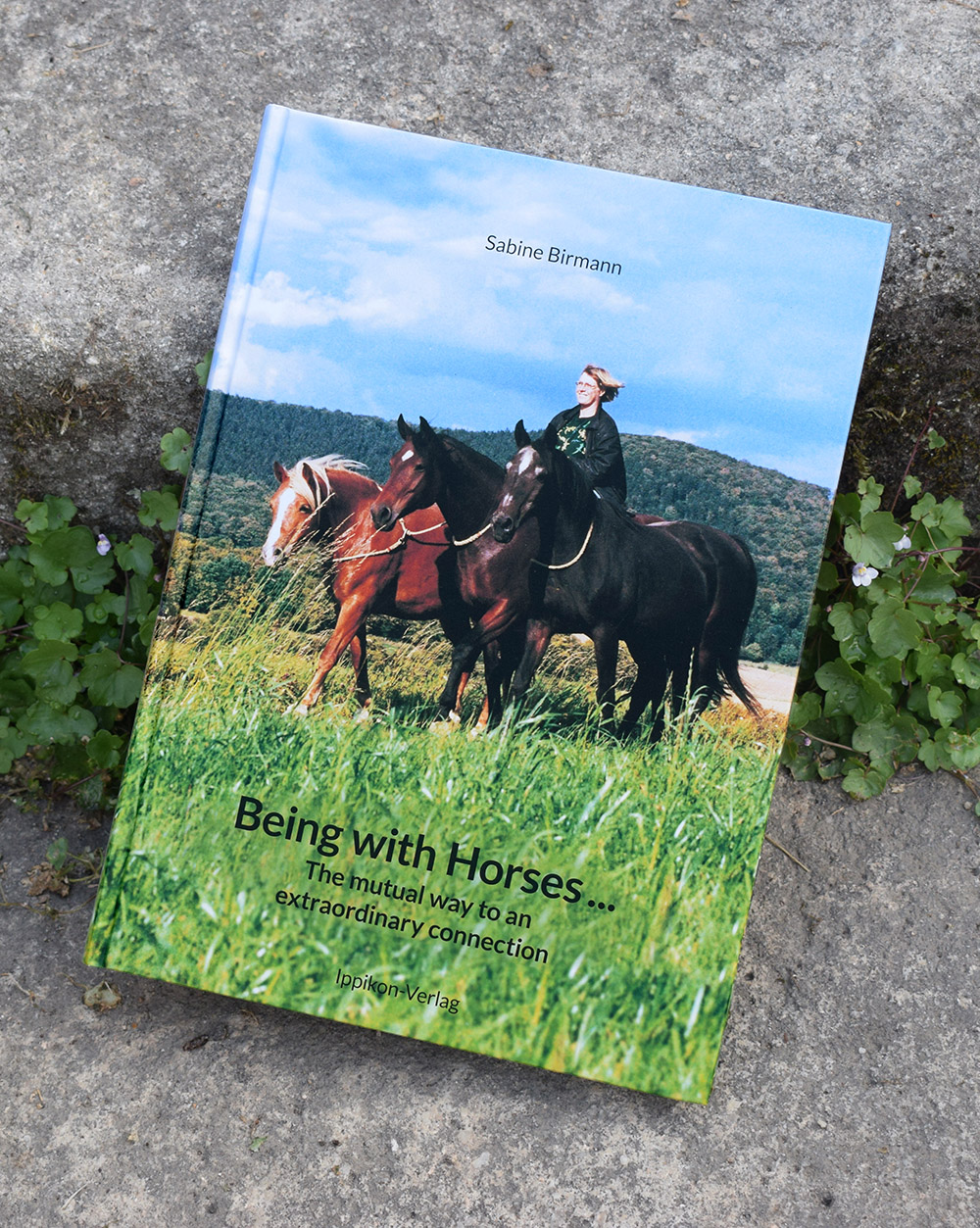 Neues Buch von Sabine Birmann auf Englisch: Being with Horses … the mutual way to an extraordinary connection